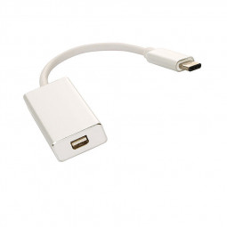 USB 3.1 Type C to Mini DisplayPort DP Female 1080p HDTV Adapter Cable - Silver