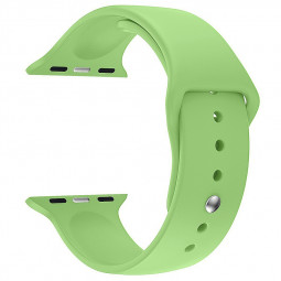 For Apple Watch 42mm Silicone Sport Strap Wristwatch Band Wristband - Ice Green