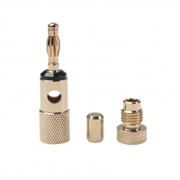 One Pair High-grade All Copper Gold Plating Speaker Plug Nakamichi Speaker Banana Plugs