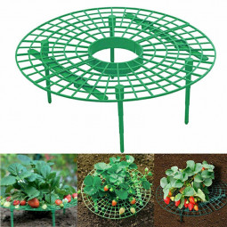 Strawberry Plant Support Stand Adjustable Growing Racks and Frame Vegetable Rack